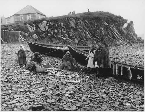 Tlingit women and children cleaning fish on beach, southeastern Alaska, ca.1907.