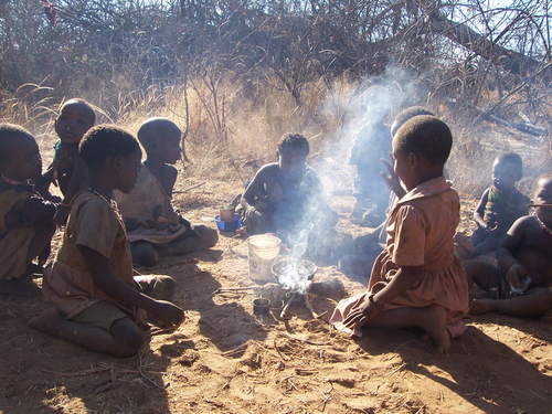 Hadza children on average hunt and gather about half their food; these children are cooking their meal